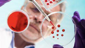 Studiu pe celule stem
